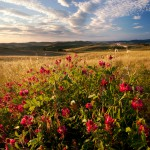campagna-tiziano-bruno-foto